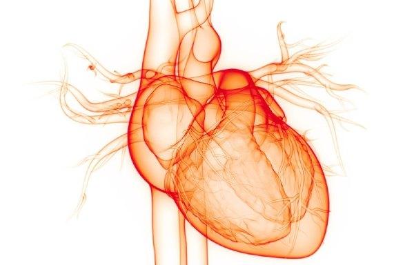 جراحة القلب المفتوح