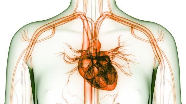 نسبة نجاح عملية تغيير شرايين القلب